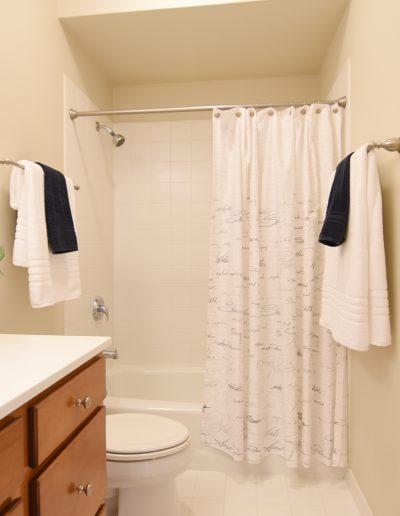 Hall Bath - Style It Home, LLC