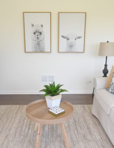 Fox Valley Vacant Staging Family Room - Style It Home, LLC
